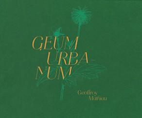Geum Urbanum - Geoffroy Mathieu