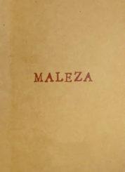 Maleza - Nía Diedla