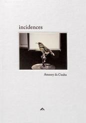Incidences - Amaury da Cunha