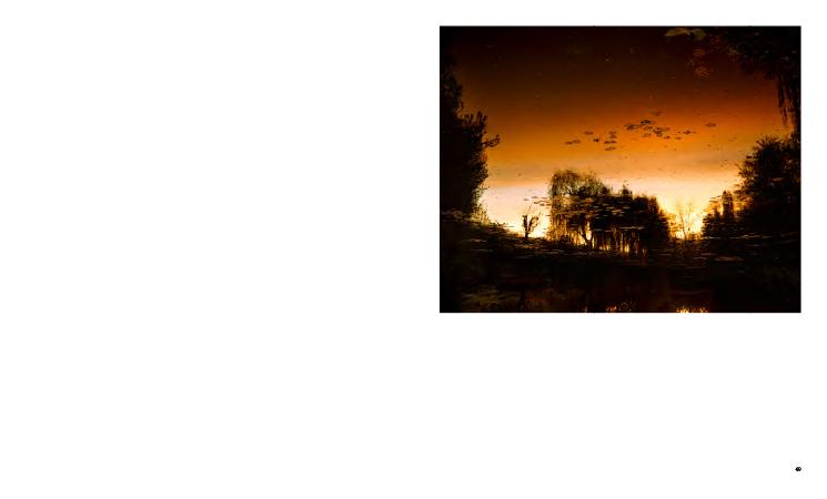 Photographier les jardins de Monet
