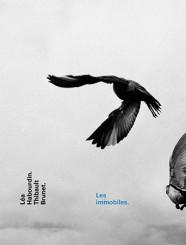 Les immobiles - Thibault Brunet, Léa Habourdin