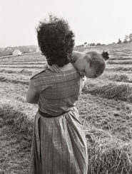 Guy Hersant, un photographe en campagne - Guy Hersant